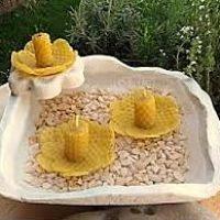 propiedades de la cera de abeja